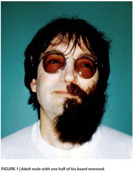 half-beard
