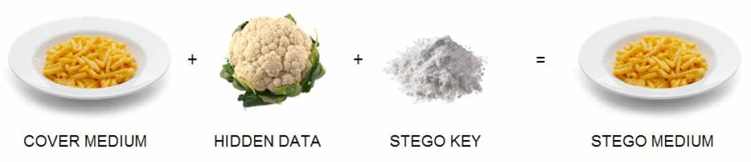 Food_steganography