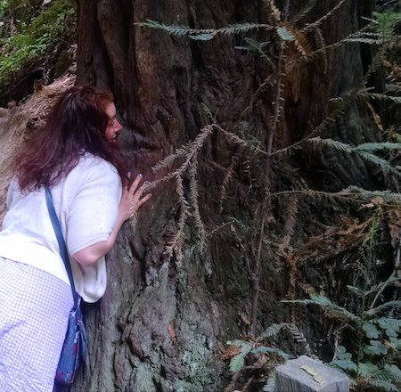 eleni-tree